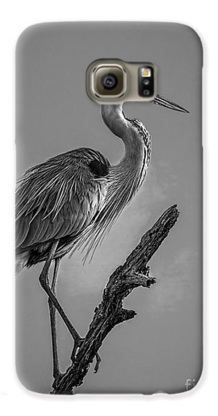 Blue In Black-bw Galaxy S6 Case by Marvin Spates