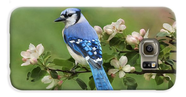 Bluejay Galaxy S6 Case - Blue Jay And Blossoms by Lori Deiter