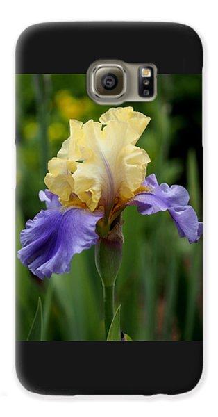 Blue Yellow Iris Germanica Galaxy S6 Case by Rona Black