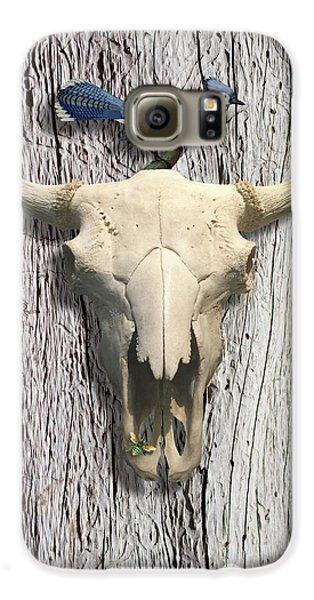 Bluejay Galaxy S6 Case - Bluejay And The Buffalo Skull by Gary Grayson