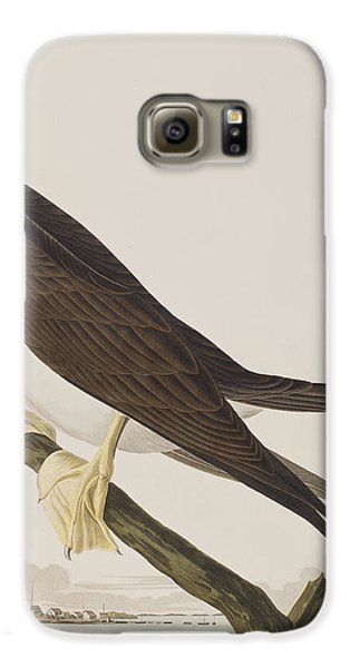 Boobies Galaxy S6 Case - Booby Gannet   by John James Audubon