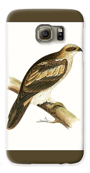 Booted Eagle Galaxy S6 Case by English School