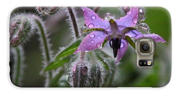 Borage Umbrella Galaxy S6 Case