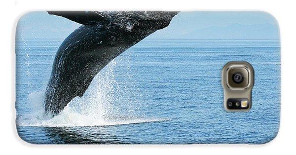 Breaching Humpback Whale Galaxy S6 Case