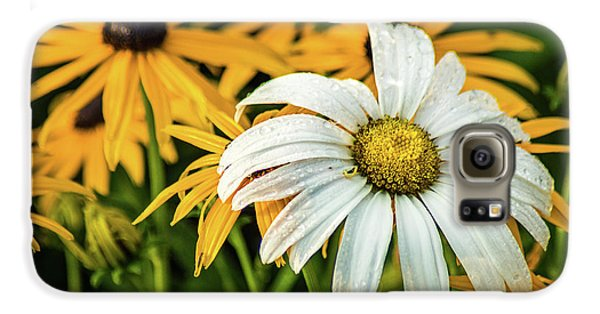 Galaxy S6 Case featuring the photograph Bride And Bridesmaids by Bill Pevlor