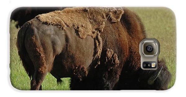 Buffalo Galaxy S6 Case
