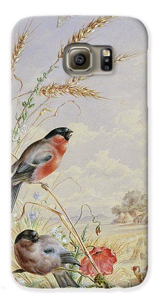 Bullfinches In A Harvest Field Galaxy S6 Case by Harry Bright