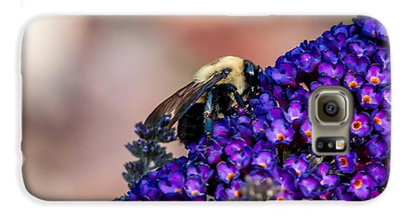 Bumble Bee Galaxy S6 Case