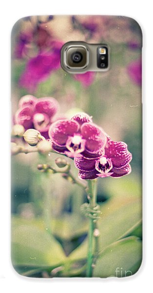 Galaxy S6 Case featuring the photograph Burgundy Orchids by Ana V Ramirez