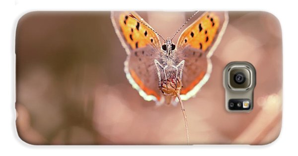Butterfly Beauty Galaxy S6 Case