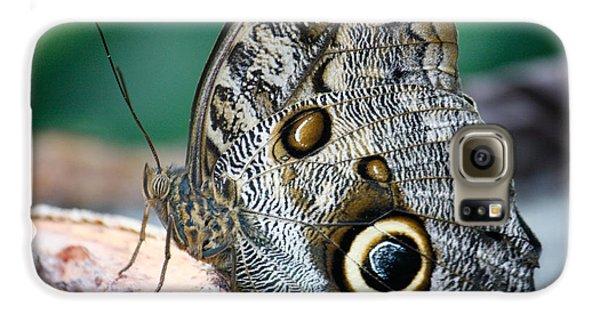 Butterfly Galaxy S6 Case