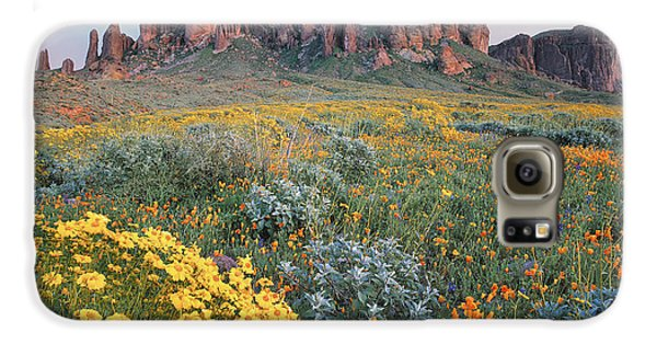 Mountain Galaxy S6 Case - California Brittlebush Lost Dutchman by Tim Fitzharris