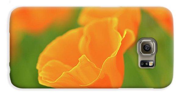 California Spring Poppy Macro Close Up Galaxy S6 Case