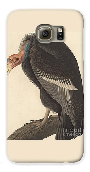 Californian Vulture Galaxy S6 Case by John James Audubon