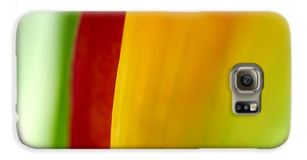 Lily Galaxy S6 Case - Calla Lily by Silke Magino