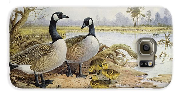 Canada Geese Galaxy S6 Case