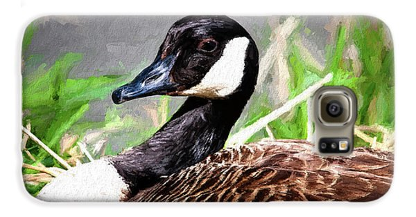 Goose Galaxy S6 Case - Canadian Goose by Tom Mc Nemar