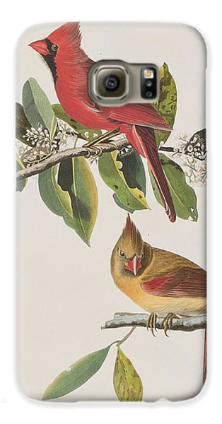 Cardinal Grosbeak Galaxy S6 Case by John James Audubon