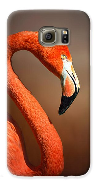 Caribean Flamingo Portrait Galaxy S6 Case