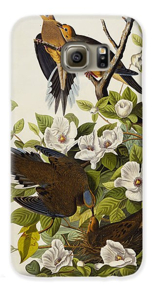 Carolina Turtledove Galaxy S6 Case by John James Audubon