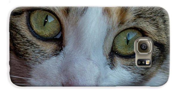 Cat Eyes Galaxy S6 Case