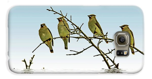 Cedar Waxwings On A Branch Galaxy S6 Case by Geraldine Scull
