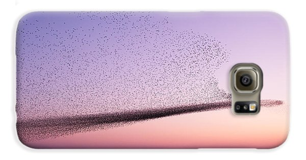 Chaos In Motion - Starling Murmuration Galaxy S6 Case