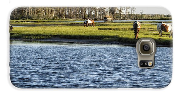 Chincoteague Ponies On Assateague Island Galaxy S6 Case