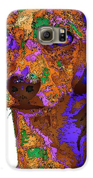 Chloe. Pet Series Galaxy S6 Case