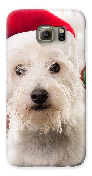 Christmas Elf Dog Galaxy S6 Case by Edward Fielding