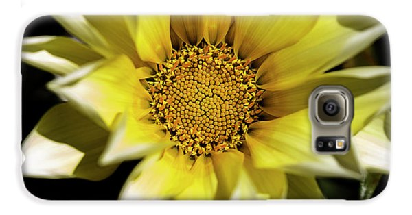 Galaxy S6 Case featuring the photograph Chrysanthos by Linda Lees