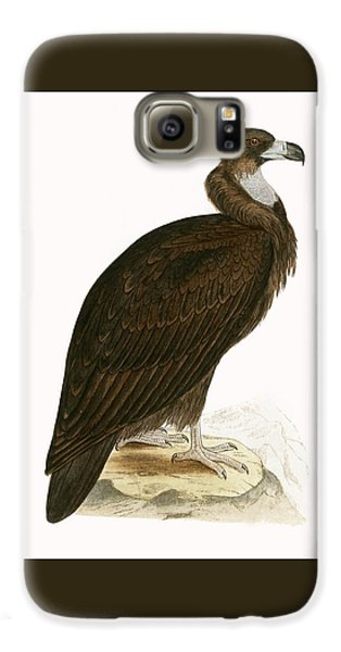 Cinereous Vulture Galaxy S6 Case by English School