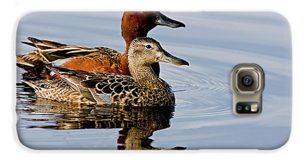 Cinnamon Teal Pair Galaxy S6 Case