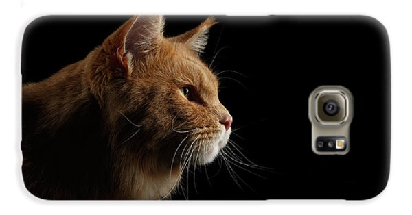 Cat Galaxy S6 Case - Close-up Portrait Ginger Maine Coon Cat Isolated On Black Background by Sergey Taran