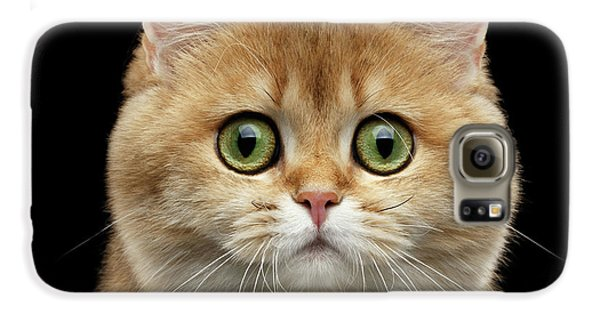 Cat Galaxy S6 Case - Close-up Portrait Of Golden British Cat With Green Eyes by Sergey Taran
