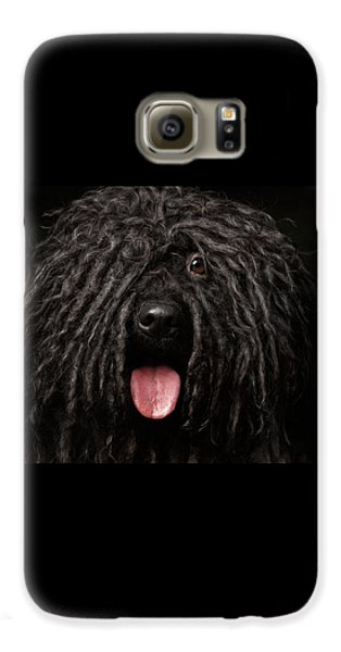 Dog Galaxy S6 Case - Close Up Portrait Of Puli Dog Isolated On Black by Sergey Taran