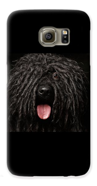 Close Up Portrait Of Puli Dog Isolated On Black Galaxy S6 Case by Sergey Taran
