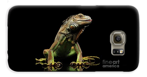 Closeup Green Iguana Isolated On Black Background Galaxy S6 Case