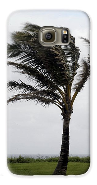 Coastal Winds Galaxy S6 Case