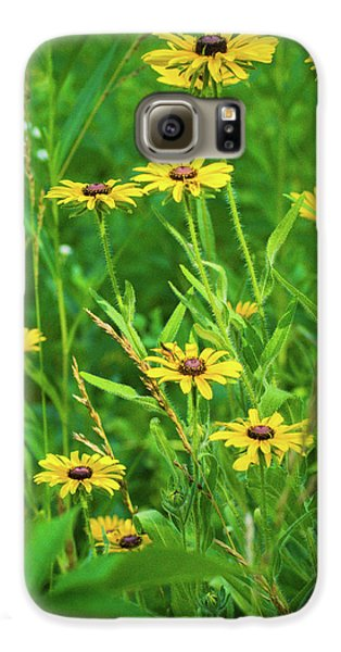 Galaxy S6 Case featuring the photograph Collection In The Clearing by Bill Pevlor