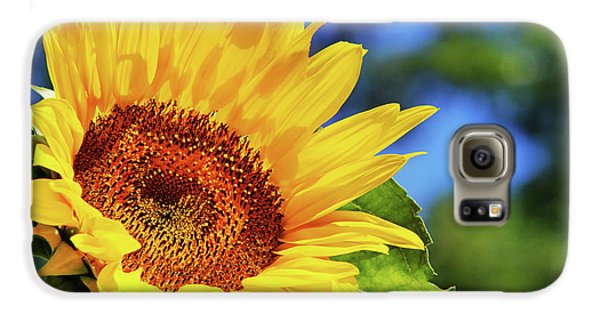 Color Me Happy Sunflower Galaxy S6 Case