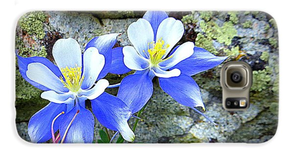 Galaxy S6 Case featuring the photograph Colorado Columbines by Karen Shackles