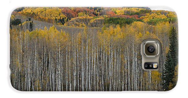 Colorado Splendor Galaxy S6 Case