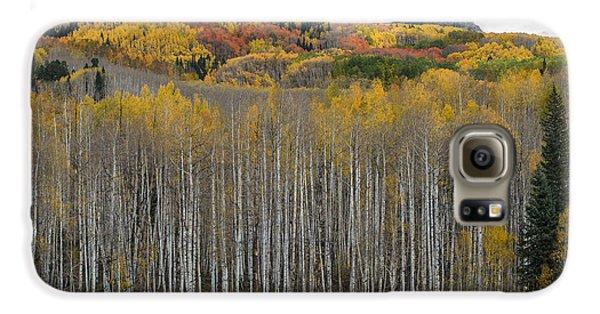 Colorado Splendor Galaxy S6 Case