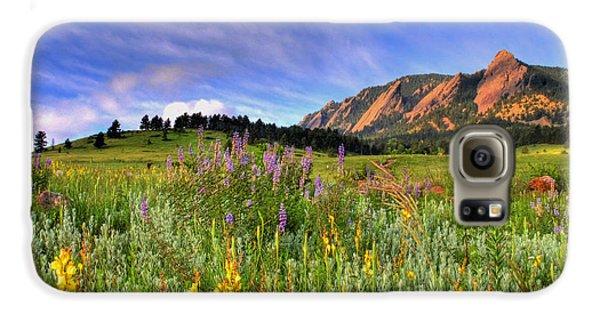 Landscapes Galaxy S6 Case - Colorado Wildflowers by Scott Mahon