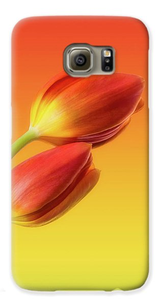 Tulip Galaxy S6 Case - Colorful Tulips by Wim Lanclus