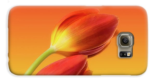 Colorful Tulips Galaxy S6 Case by Wim Lanclus
