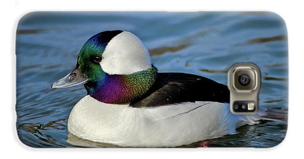 Colorful Waterfowl Galaxy S6 Case