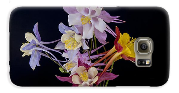 Columbine Medley Galaxy S6 Case by Gary Lengyel