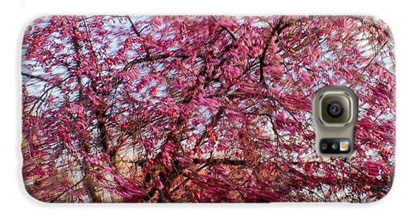 Columnar Sargent Cherry 1 Galaxy S6 Case
